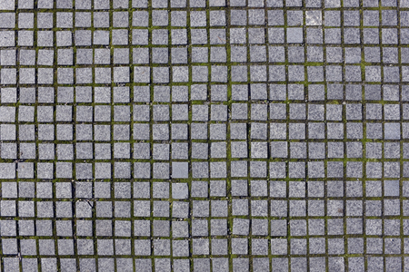Small square granite sidewalk stones lie with intervals in which the green lichen grows Stock Photo