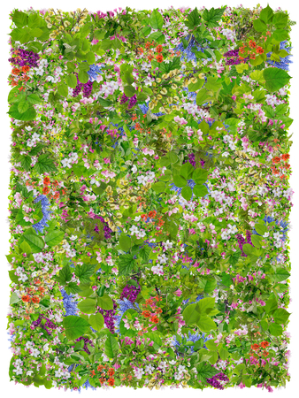prayer rug: Green Easter Prayers Rug  abstract collage made from fresh spring branches plants  and  flowers. Isolated Stock Photo