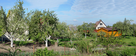 no name: Early May solar morning in no name European village. Apple trees and cherries have already faded. Panoramic collage from several photos Stock Photo
