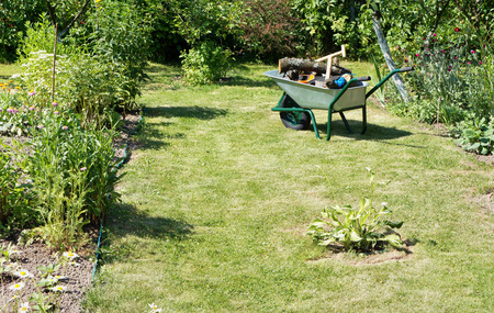 The shovel, the axe, saw, rope and stumps of trees lie in a green manual one-wheeled wheelbarrow. The wheelbarrow is on a garden lawn. Sunny summer day