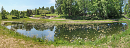 Panorama of a small rural pond with still water. The water surface has grown with weeds and ooze. Ashore the wood grows and the dirt road runs. Sunny spring day landscape