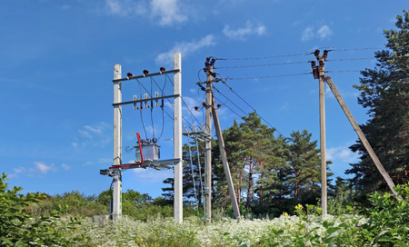 The standard mass production rural electric distributive transformer in forest. Sunny July day  panoramic landscape.