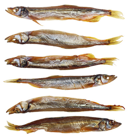 Six  whole  smoked  capelin saury sprat  Baltic sea  fish with heads and guts-  traditional Lithuanian beer snack. Isolated on white studio macro set