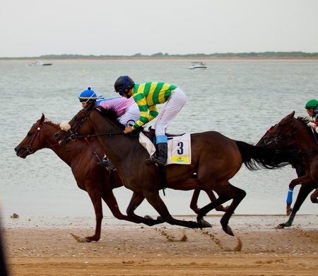 SANLUCAR DE BARRAMEDA, CADIZ, SPAIN - AUGUST 07: Horses races on August 07, 2010 on the beach of Sanlucar de Barrameda, Cadiz, Spain. The races of Sanlucar de Barrameda  are one of the most important horses races of the world