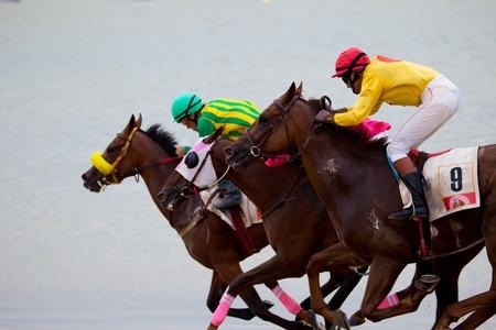 horse races: Sanl�car DE BARRAMEDA, CADIZ, Espa�a - 07 de agosto: Riders desconocidos de las carreras de caballos de la playa de Sanl�car de Barrameda el 07 de agosto de 2010 en Sanl�car de Barrameda, C�diz, Espa�a.