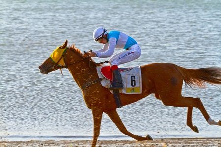 SANLUCAR DE BARRAMEDA, CADIZ, SPAIN - AUGUST 10: Unidentified rider race horses on Sanlucar de Barrameda beach on August 10, 2011 in Sanlucar de Barrameda, Cadiz, Spain.