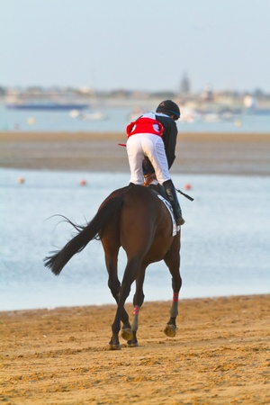 SANLUCAR DE BARRAMEDA, CADIZ, SPAIN - AUGUST 10: Unidentified rider at the start of race horses on Sanlucar de Barrameda beach on August 10, 2011 in Sanlucar de Barrameda, Cadiz, Spain. Stock Photo - 11305344