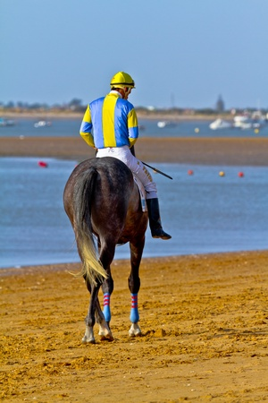 SANLUCAR DE BARRAMEDA, CADIZ, SPAIN - AUGUST 10: Unidentified rider at the start of race horses on Sanlucar de Barrameda beach on August 10, 2011 in Sanlucar de Barrameda, Cadiz, Spain. Stock Photo - 11817291