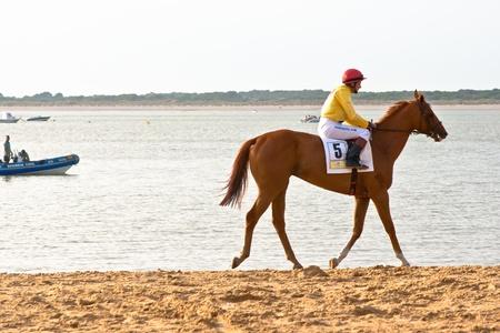 SANLUCAR DE BARRAMEDA, CADIZ, SPAIN - AUGUST 11: Unidentified rider at the start of race horses on Sanlucar de Barrameda beach on August 11, 2011 in Sanlucar de Barrameda, Cadiz, Spain. Stock Photo - 11906804