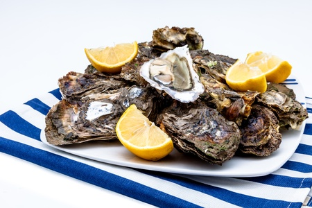 Lots of oysters on a dish with lemon Stock Photo - 15706442