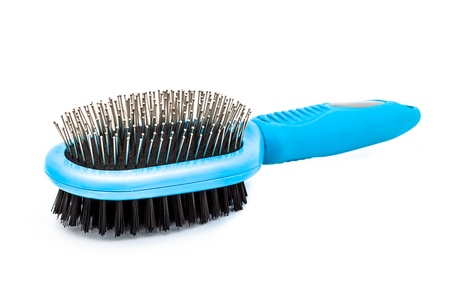 grooming: Dog brush on a white background