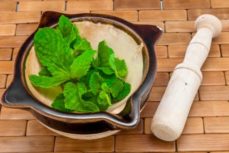 A composition of a mortar, pestle and peppermint photo