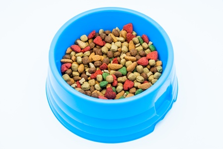 Dry dog food in a blue bowl photo