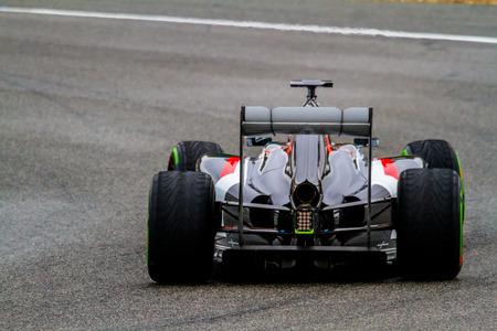 sauber: JEREZ DE LA FRONTERA, SPAIN - JAN 31: Adrian Sutil of Sauber F1 races on training session on January 31 , 2014, in Jerez de la Frontera , Spain