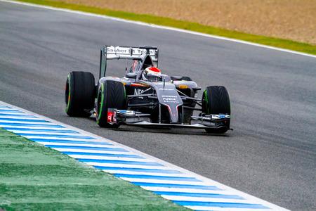 JEREZ DE LA FRONTERA, SPAIN - JAN 31: Adrian Sutil of Sauber F1 races on training session on January 31 , 2014, in Jerez de la Frontera , Spain
