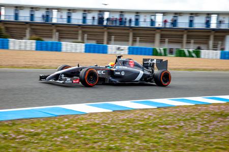 turn of the year: JEREZ DE LA FRONTERA, SPAIN - JAN 28: Esteban Gutierrez of Sauber F1 races on training session on January 28 , 2014, in Jerez de la Frontera , Spain