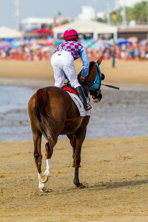 SANLUCAR DE BARRAMEDA, CADIZ, ESPAÑA - 27 DE AGOSTO: El jinete no identificado al principio de la segunda raza de caballos llamó Fundacion Cajasol el 27 de agosto de 2016 en Sanlucar de Barrameda, Cádiz, España.