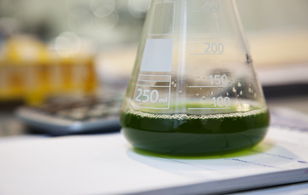 Close-up of a flask with green solution in a laboratory Stock Photo