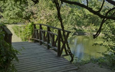 Little bridge by water-lily lack in Vrana park
