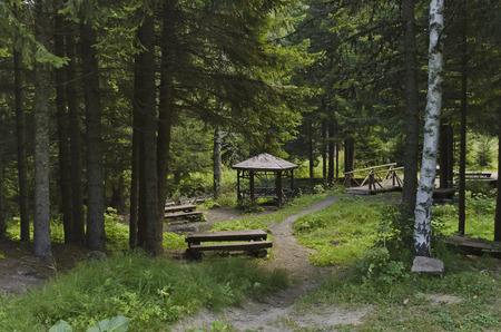 respite: Beauty nook for respite in the Vitosha mountain, Bulgaria