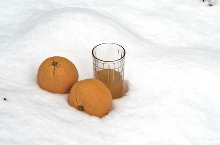 snowdrift: Orange fruit and orange juice refrigerate in the snow-drift at garden, Sofia, Bulgaria