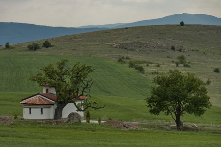 hallowed: Beautiful landscape with green tree and old chapel western Bulgaria