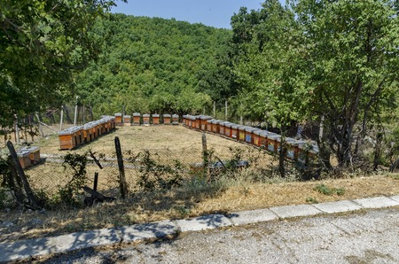 farmyard: Part of farmyard with apiary at  Batkun Monastery St. St. Peter and Paul , Pazardzhik, Rhodope, Bulgaria
