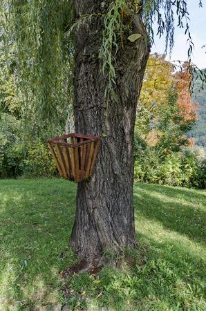 waste basket: Waste basket on tree stem in park, Pancharevo, Bulgaria Stock Photo
