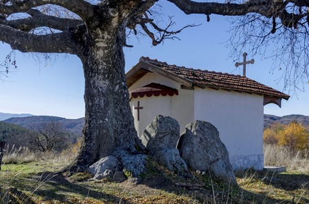 venerable: Beautiful  landscape with autumnal venerable birch tree and old chapel, located in Plana mountain, Bulgaria Stock Photo