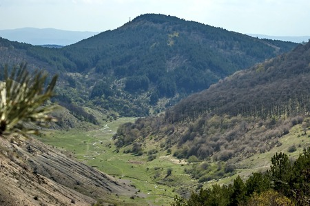 meanders: Springtime panorama of mountain landscape with forest and beauty meanders river in valley, Murgash mountain, Bulgaria Stock Photo