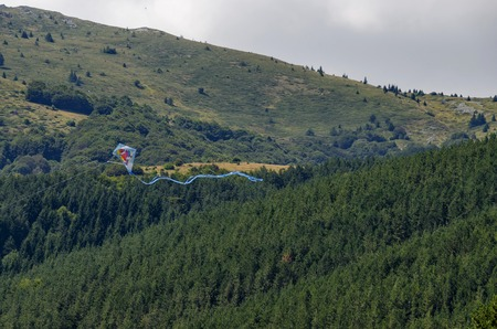 Kite fly high over panorama of glade and  green  forest in Vitosha mountain, Bulgaria Stock Photo