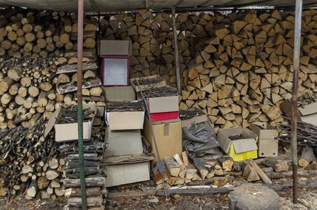 Stack of full round firewood and broken branch different  size for facile kindle in winter, Lakatnik, Bulgaria