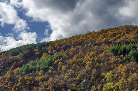 Colorful autumn landscape in the  Balkan mountain, Bulgaria Stock Photo