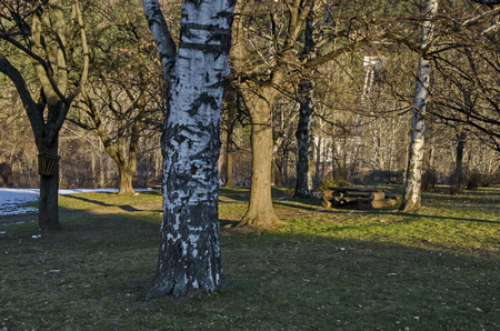 Wintertime view with place for respite in the park, Pancharevo, Bulgaria Stock Photo