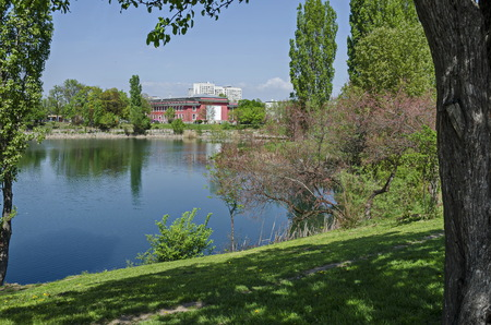 Early springtime green, dry reed or rush and house on a beauty  lake in residential district Drujba, Sofia, Bulgaria