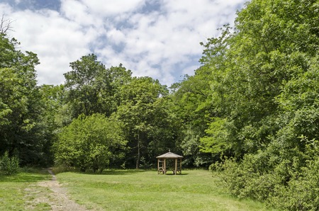 Wooden bench, alcove and table on a meadow in the forest at natural old West park, Sofia, Bulgaria 스톡 콘텐츠