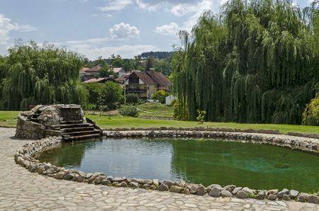 View of public garden with beauty artificial pond and green reflection  in  residential district, town Delchevo among Maleshevo and Osogovo mountains, Macedonia, Europe