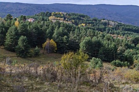 Amazing autumn view of glade, hill, forest with deciduous and coniferous trees around Batak dam reservoir, Rhodope mountains, Bulgaria