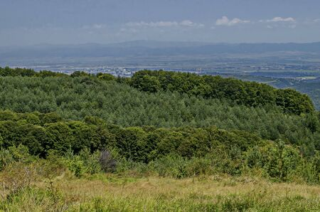 Panorama of glade and  green mix forest in Vitosha mountain  and part at Sofia city in front of Balkan mountain, Bulgaria