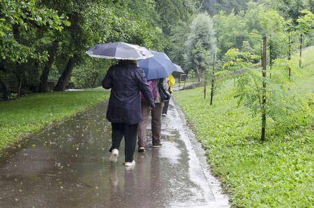 Rainy day walk with umbrellas in Rila Park near town Dupnitsa, Bulgaria Foto de archivo - 129725304