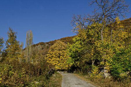 Amazing autumn view of glade, hill, forest with deciduous trees and road near to pretty village Zhrebichko, Bratsigovo municipality,  Rhodope mountains, Bulgaria