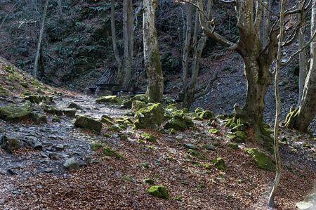 Autumn walk through the labyrinth of the Teteven Balkan with high peaks and river, Stara Planina, Bulgaria Banco de Imagens