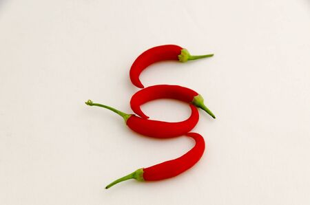 Sign or symbol paragraph, made from the fruit of fresh chilli red pepper with a green stalk, Sofia, Bulgaria
