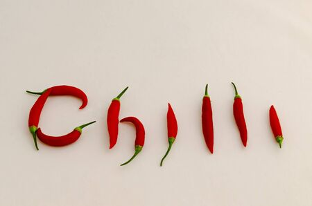 Sign or symbol Chilli, made from the fruit of fresh chilli red pepper with a green stalk, Sofia, Bulgaria