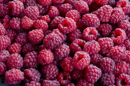 Heap of many ripe raspberry fruits, can be used as a background, Sofia, Bulgaria