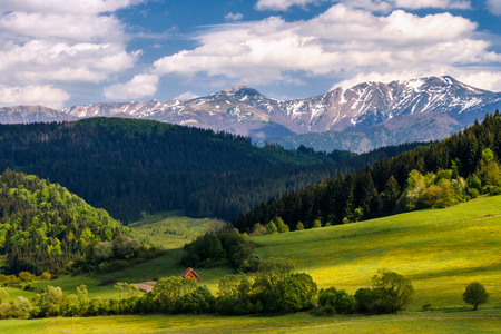 Nicely floodlit spring landscape, snow-capped mountains in the background, national park Mala Fatra in Slovakia, Europe. Stock Photo