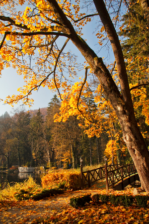 autumn in park with a lake in the spa Rajecké Teplice, Slovakia, central Europe