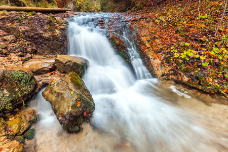 Stream in autumn forest, The Lower holes in The Mala Fatra National Park, Slovakia.