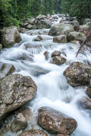 Mountain stream in High Tatras National Park, Slovakia, Europe.