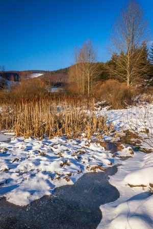Winter landscape with a frozen lake. Stock Photo